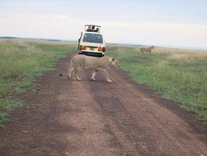 9 Days Amazing Safari in Kenya and Tanzania