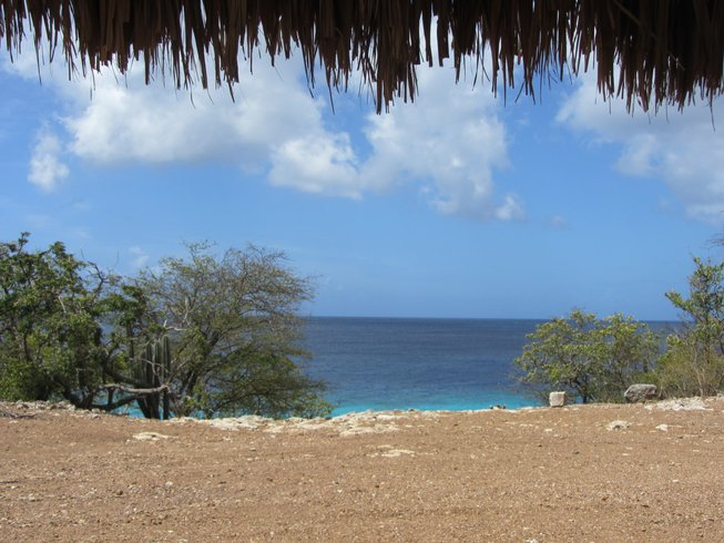 8 Days Yoga Singles Holidays in Curacao