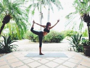 13 Day KW 200-Hour Yoga Teacher Training in Tamarindo, Guanacaste