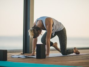 7 Day Online Revitalize Yoga and Meditation Retreat over Zoom
