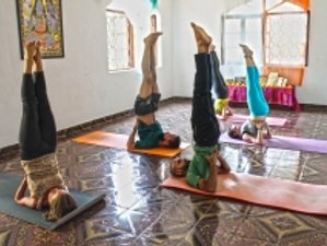 26 Days 200-Hour Hatha Yoga Teacher Training in Himalaya