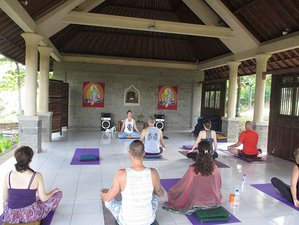 28 Days 200hr Vinyasa Yoga Teacher Training in Greece