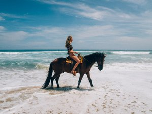 4 Day Beach Vacation with Horseback Riding in Troncones, Guerrero