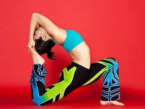 8 Days Rejuvenating Meditation and Yoga Retreat USA