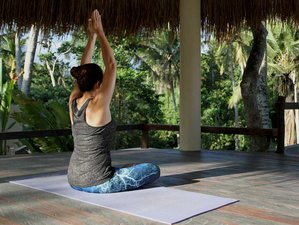 4 Day Relaxation Wellness Meditation and Purification Yoga Holiday in Ubud, Bali