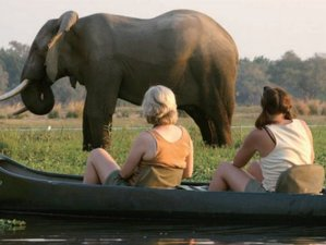 3 Days Marula Canoe Safari in Mashonaland West Province, Zimbabwe