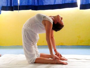 One Week Ashtanga Tristhana & Traditional Hatha Rejuvenation Yoga Retreat in Rishikesh