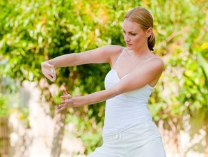 6 Days Beginner Qigong Martial Arts Training in Thailand