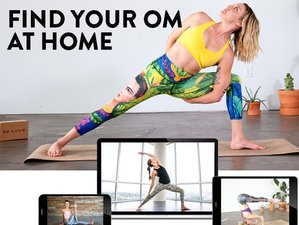 2 Day Weekend Foundations of Yoga Course Online via Zoom