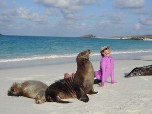 10 Days Wildlife Excursions and Yoga Holiday in the Galapagos Islands, Ecuador