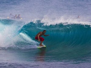 10 Days All-inclusive Tropical Waves Surf Camp in Puerto Viejo, Costa Rica