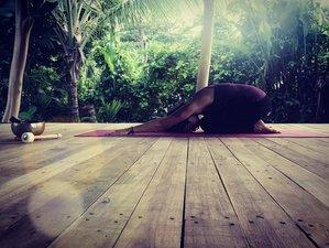6 Days or 2 Weeks 1-On-1 30-Hour Online Yin Yoga Teacher Training