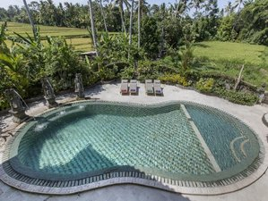 14 Days Whittle Away Weight Detox Retreat in Bali