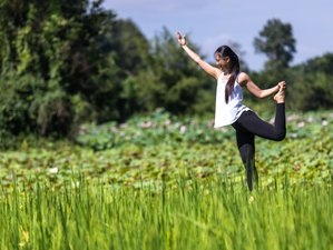 4 Day The Art of Yoga Stay in Siem Reap