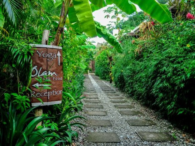 7 Days Wellness, Surf, and Yoga Retreat in Santa Teresa, Costa Rica