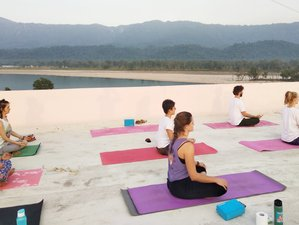 25 Day Family Run 200-Hour Hatha, Iyengar, Aerial, Ashtanga, Ayurveda Yoga Teacher Training in India