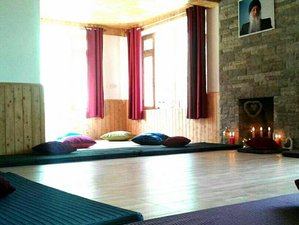 8 Days Wellness, Meditation and Yoga Retreat in the Himalayas, India