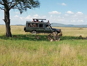 6 Days Tanzania Authentic Family Safari From Arusha