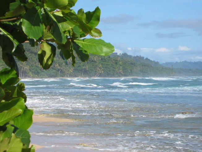 5 Days Detox, Surf, and Yoga Retreat in Limón, Costa Rica