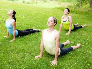 8 Days Yoga and Ayurveda Retreat in Czech Republic