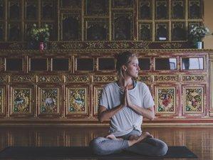 3 Tage Grüner Detox und Yoga Urlaub auf einer Einsamen Insel in Daga, Lettland