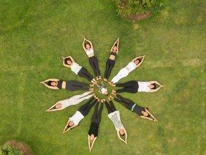 15 días de profesorado VIP de yoga de 200 horas en California, EUA
