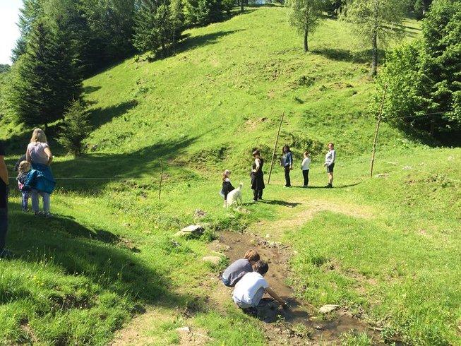 6 días de fotografía, sendrismo y yoga en Transilvania, Rumania