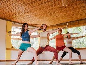 28 Day 200-Hour Meditation and Yoga Teacher Training Course in Ubud, Bali