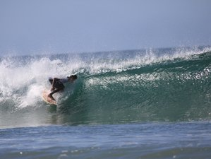 8 Days Relaxing Surf Camp in Playa Avellana, Guanacaste Province, Costa Rica