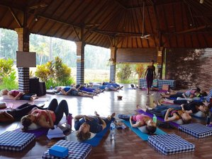 26 Days 200-Hour Holistic Yoga Teacher Training in Bali