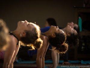 26 Day 250-Hour Yoga Alliance Foundational Level Yoga Teacher Training in Puerto Viejo, Limon