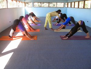 29 Days 200-Hour Yoga Teacher Training in Amboli, India