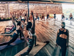29 Day 200-Hour Vinyasa and Hatha Yoga Immersion and Teacher Training in Canggu, Bali