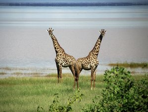 10 Days Game Park Safari in Tanzania