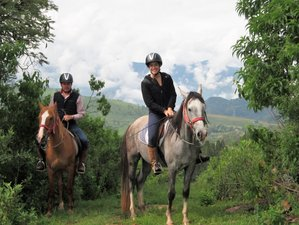 4 Day Camping and Horseback Riding Experience in Valle de Bravo, State of Mexico
