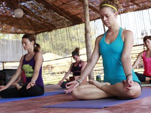 14-Daagse Yoga Vakantie in South Goa, India
