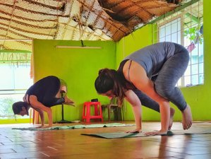 1 Month Online Yoga, Meditation, and Pranayama Retreat