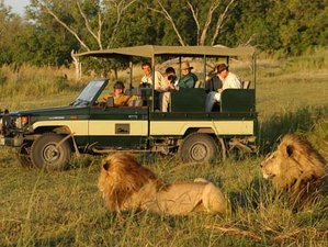 9 Days Adventure Safari in Tanzania