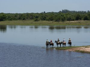 6 Day Fantastic Wildlife Tour, Horseback Riding and Ranch Vacation in Corrientes, Argentina