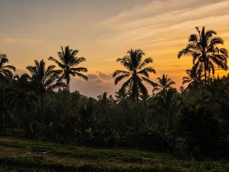 Desa Tejakula