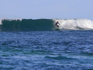 5 Days All-Level Homegrown Surf Camp in Fuerteventura, Spain