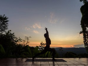 4 Day Private Relax and Rejuvenate Yoga Holidays in Puerto Viejo de Talamanca, Limon