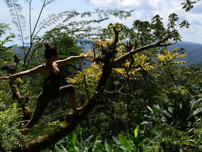 8 Days Wildlife Yoga Retreat in Costa Rica