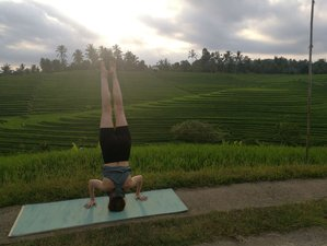 5 Day Village Culture, Meditation, and Yoga Retreat in Bali, Sesandan