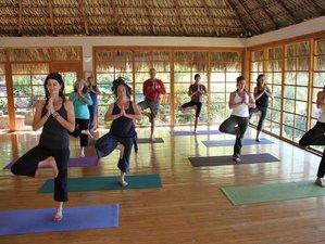 8 días retiro de yoga y elementos de conexión en el departamento de Sololá, Guatemala