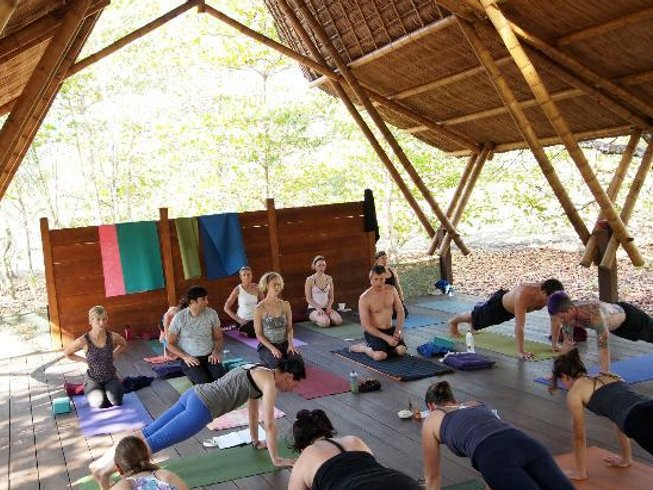 7 Days Jungle Life Yoga Retreat in Costa Rica