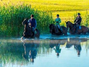 7 Days Awe-Inspiring Horse Riding Holiday in Galiny, Poland