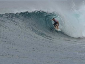 8 Day Excursions and Surf Camp for Beginners and Intermediate in Thulusdhoo, Kaafu Atoll