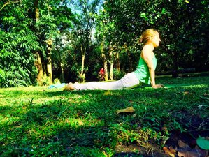 7 Days You Are What You Juice Yoga Retreat in Panama