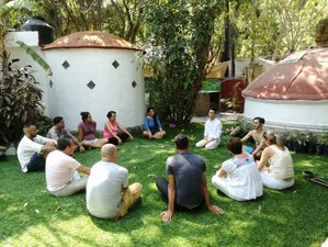 7 Day All-inclusive Jungle Beach Yoga Retreat with Qigong in Puerto Vallarta, Jalisco